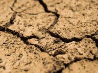 Elementarschaden: Erdbeben, Erdsenkungen und Erdrutsche