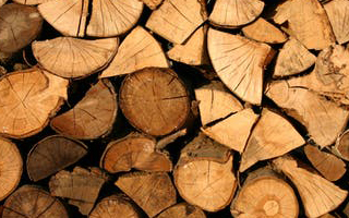 Gebäudeversicherung bei einem Holzhaus